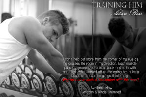 1ab5f-traininghim_teaser